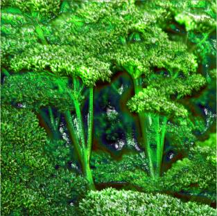 Parsley for people who are worn down by stress